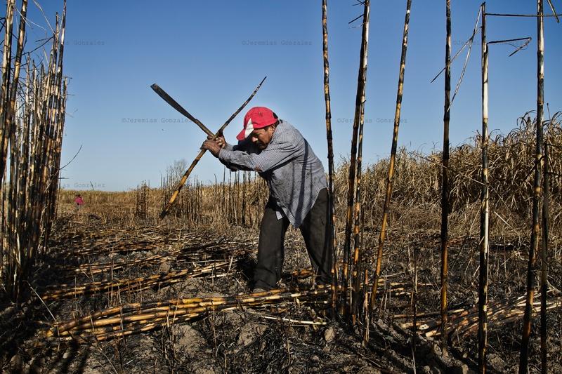 http://www.jeremiasgonzalez.com/files/gimgs/50_agricultura-familiar13bd.jpg