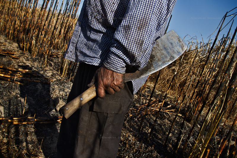 http://www.jeremiasgonzalez.com/files/gimgs/50_agricultura-familiar14bd.jpg