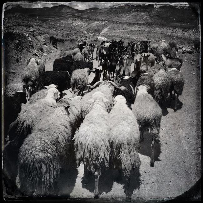 http://www.jeremiasgonzalez.com/files/gimgs/72_a-bolivian-mobile-diary33.jpg